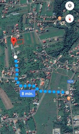 Vand sau schimb teren in Satu Nou de Jos 38 arii