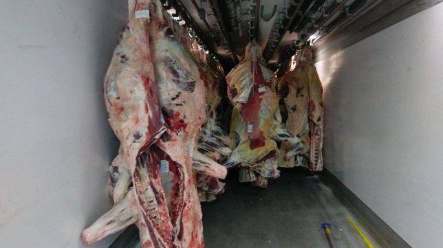 Carcasa vita bovina adultă vaca ,Miel,oaie de calitatea