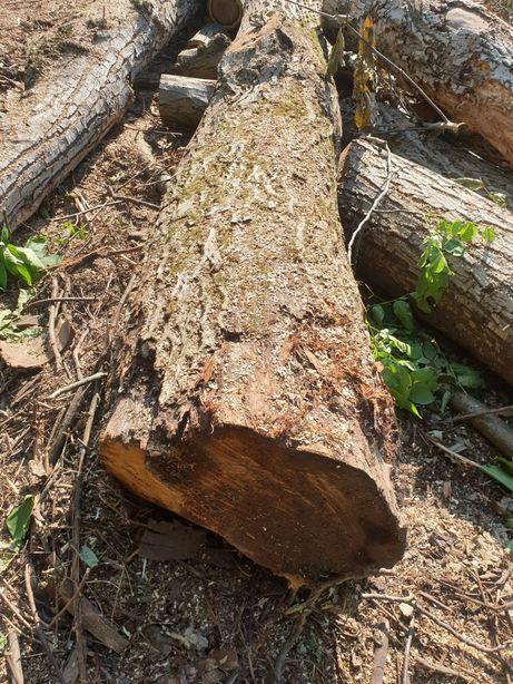 Cherestea stejar, nuc, cires, frasin, ulm , paltin