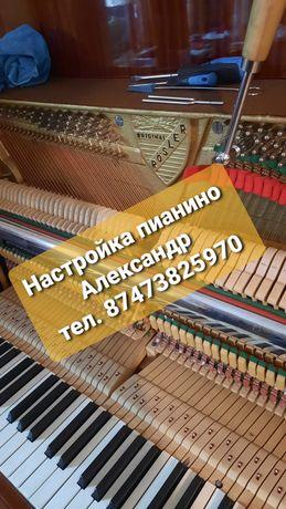 Фортепиано_настройка_пианино_настройщик_рояль_осмотр.
