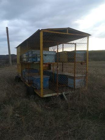 Продавам пчеларска платформа