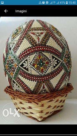 Ouă de strut