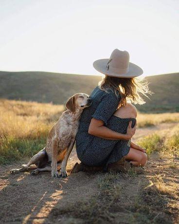 Pet sitter / Bona pentru animale de companie / Cazare animale