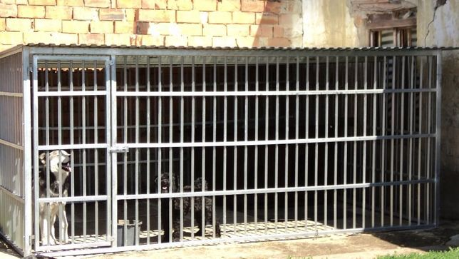 OFERTA: Tarc pentru caini mare, de 4 X 3m-Livrare rapida