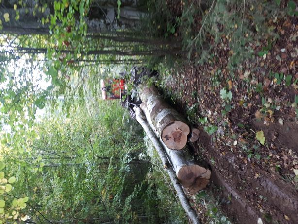 Prestari servicii exploatare forestiera