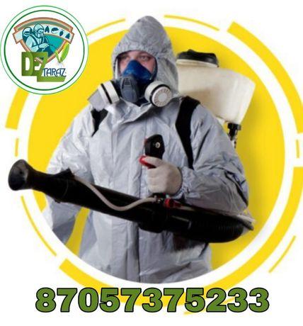 Дезинсекция , Уничтожение тараканов,клопов,вирусов,комаров,крыс,мышей