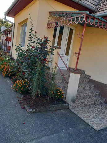 Casa de vanzare  in Sandulesti cu 3300 mp teren