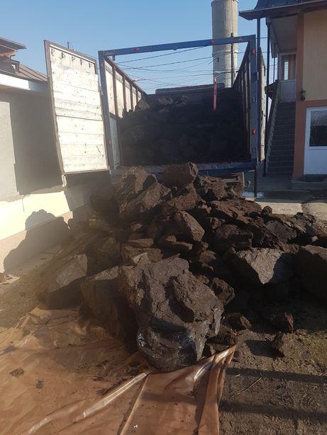 Cărbune lignit fără pământ și huma