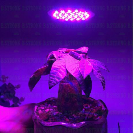 Bec full spectrum 300 led crestere plante E27 dezvoltare rasaduri