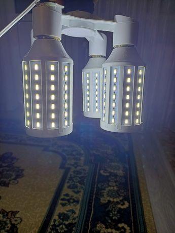 Лампочки для софтбокса