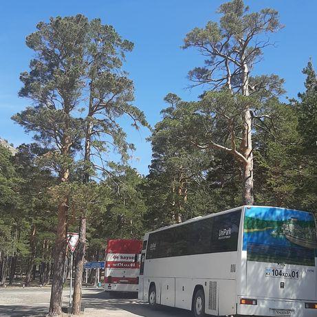 Автобус на заказ