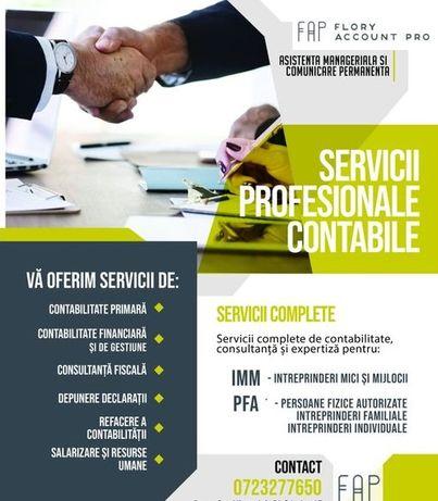 Servicii profesionale financiar contabile