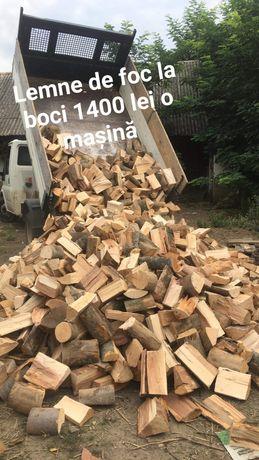 Lemne de foc la boci 1800 lei