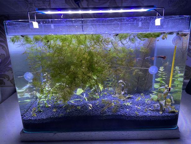 Продам аквариум заводской 40л