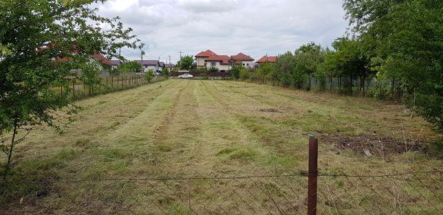 Cosire defrisare iarba arbusti rugi ambrozie mecanizat sau manual