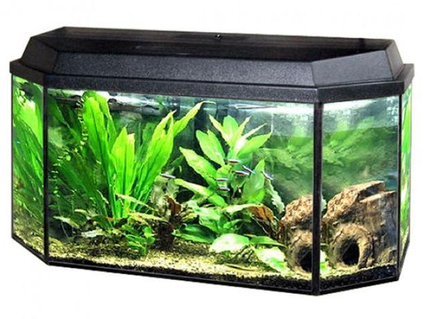 Продам аквариум на 80 л