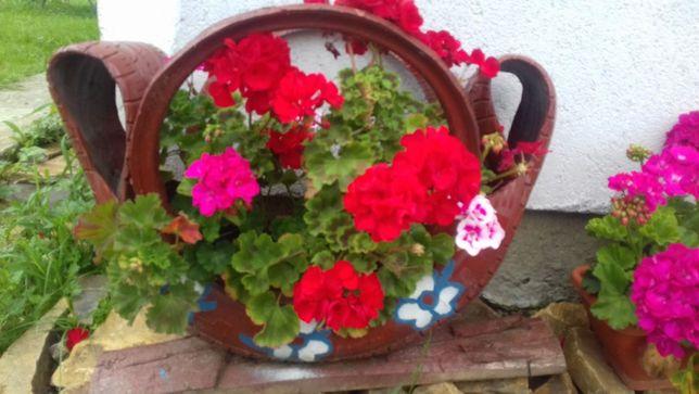 vand suport la flori din cauciuc