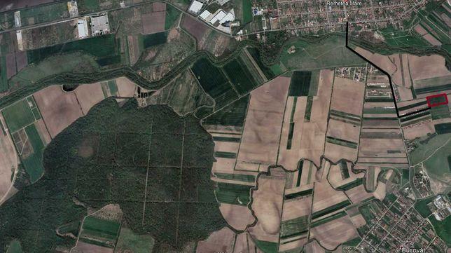 Parcele Remetea-Bucovat, puz in lucru, toate utilitatile si case langa