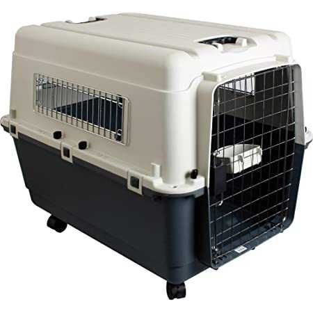 Cusca transport animale IATA