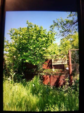 Дворно място с.Якимово3   1330кв.м центъра.Има разрушена къща.