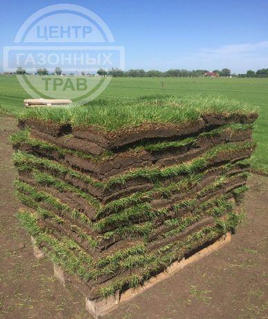 Рулонный газон самый лучший в Казахстане