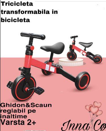 Tricicleta/Bicicleta