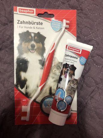 Pasta de dinti si periuta pentru caini/pisici