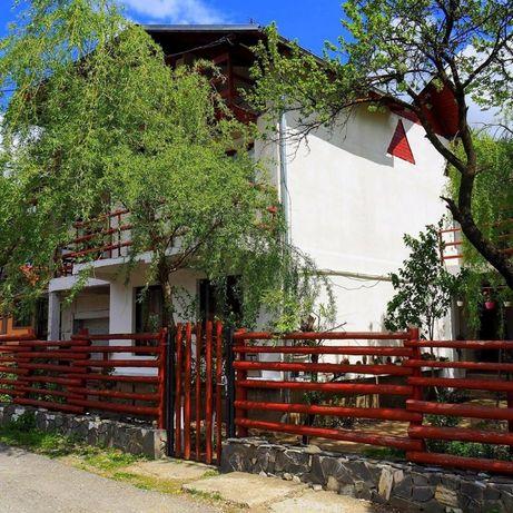 Cazare Busteni, priveliste de vis spre munte - Vila Nik Busteni