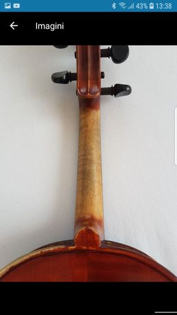 Viola de maestru