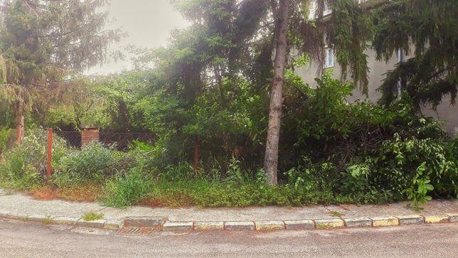 Defrisare terenuri, intretinere curti, gradini, spatii verzi