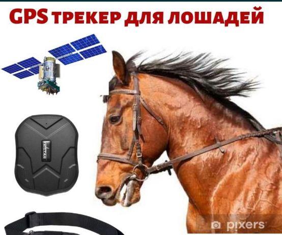 Спутниковый GPS трекер TK-Star TK-905