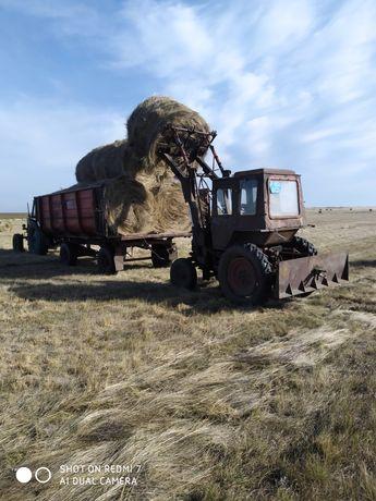 Продам трактор МТЗ 80 т25 сеновозку  вагон полевой