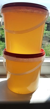 Мёд майский с желтой акации