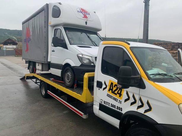 Transport Autoutilitare/Dube