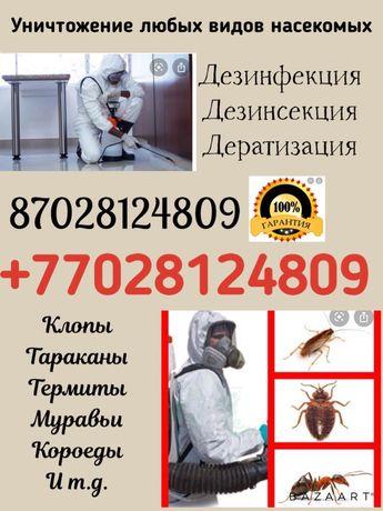 Уничтожение клопов, тараканов, термитов и т.д.