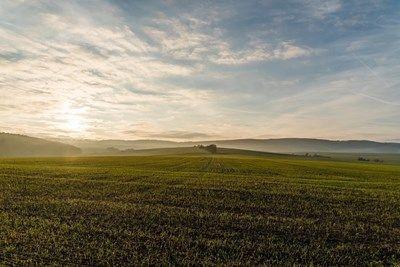Ниви Земеделска Земя Дебелцово ,Градище