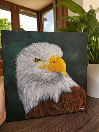 Tablou pe panza, pictura originala vultur plesuv, 35x35 cm