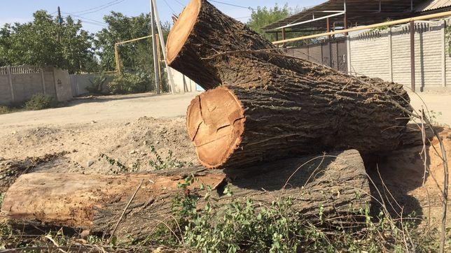 Дерево на доски/ дрова
