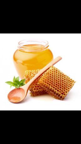 Алтайский мед натуральный