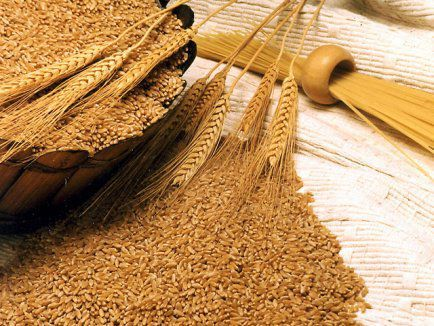 vând grâu 1,20 lei kg etc. 2021