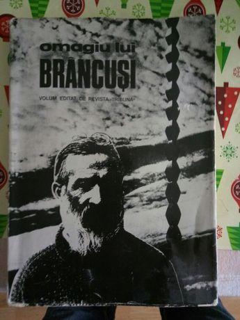 Omagiu lui Brancusi