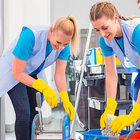 Клининговые услуги по уборкам квартир и домов с применением пара