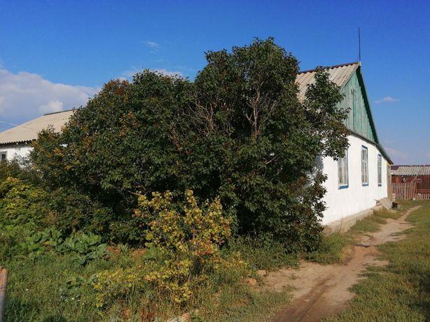 Срочно продам дом с. Алтайское