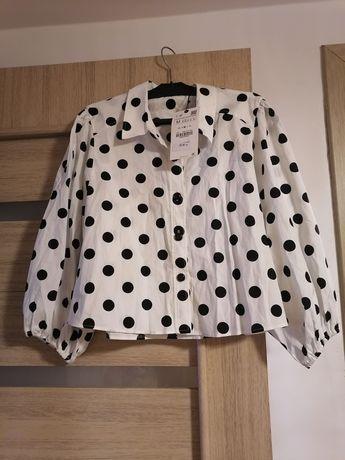 Cămașă Zara cu buline