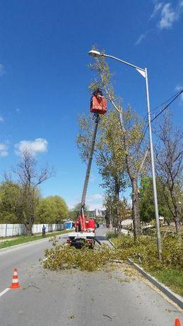 Рязане на дървета , Косене на трева, почистване на терени Варна гр. Варна - image 7