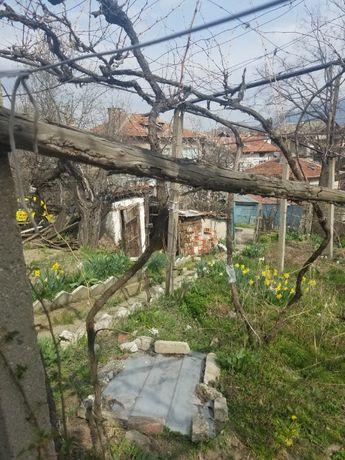 Почистване на дворове и запустели парцели ГРАД БЛАГОЕВГРАВ
