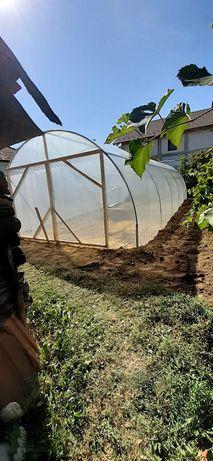 Solarii zincate pentru legume