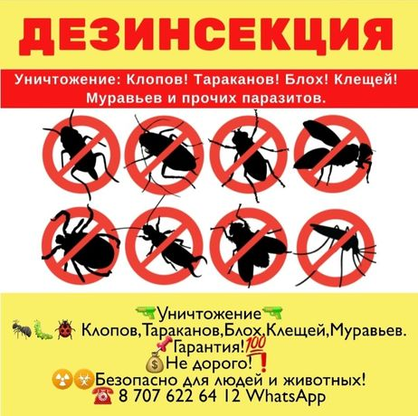 Уничтожение Клопов,Тараканов,Блох,Комаров.Гарантия и пр!СЭС!Не дорого
