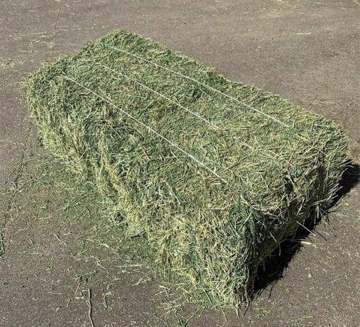 Продаю сено в тюках