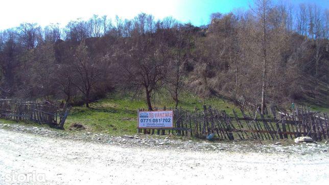 Teren pentru casă la munte. Valea Doftanei, Valea Negrașului, 1600mp